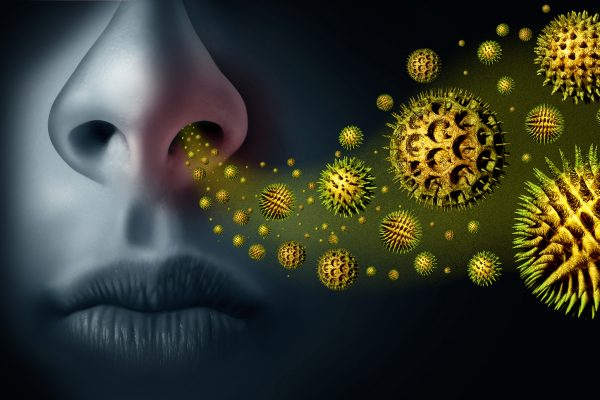 Seasonal pollen allergy and hay fever allergies and medical concept as a group of microscopic organic pollination particles flying in the air with a human breathing as a health care symbol with 3D illustration elements.
